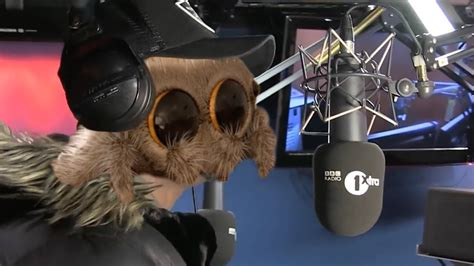 Lucas the Spider plays Man's Not Hot - YouTube