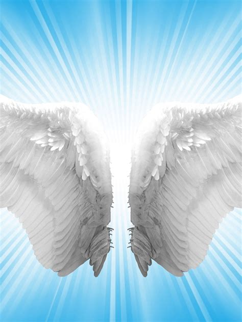 Free download angels wings blue [3500x2444] for your